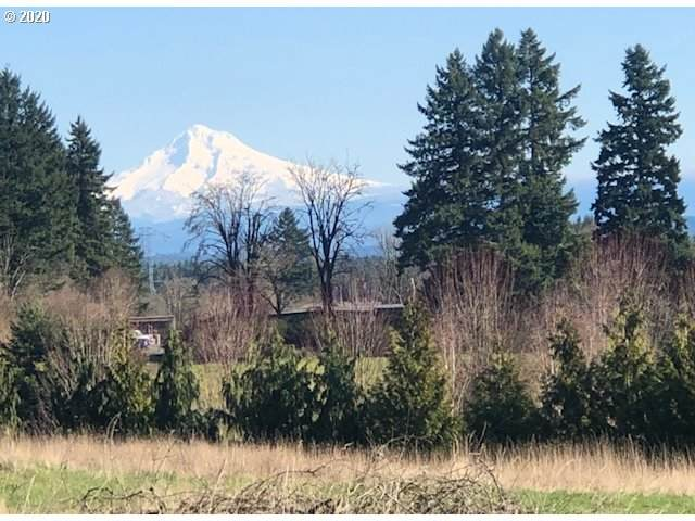 0 SW Petes Mountain Rd #00700, West Linn, OR 97068 (MLS #20531320) :: Fox Real Estate Group