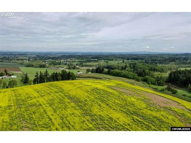 0 S Wildcat, Molalla, OR 97038 (MLS #20547807) :: Lux Properties
