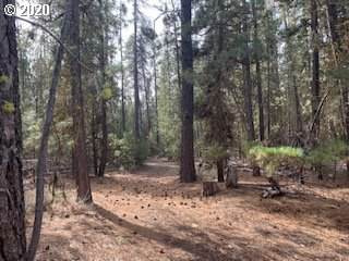 Forest Service Rd, Gilchrist, OR 97737 (MLS #20569803) :: Gustavo Group