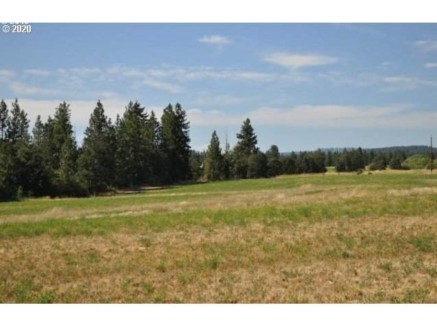 15 Chianti Rd, Goldendale, WA 98620 (MLS #20573519) :: Next Home Realty Connection