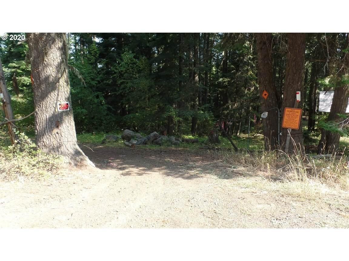78307 Lincton Mt. - Photo 1