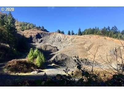 0 Kent Creek Rd, Winston, OR 97496 (MLS #20625088) :: Townsend Jarvis Group Real Estate