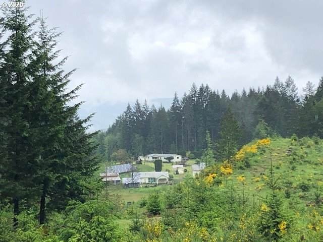 51633 NW Gheen Rd, Manning, OR 97125 (MLS #20644542) :: Townsend Jarvis Group Real Estate