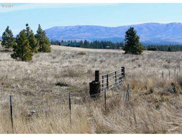 Johnson Rd, Lyle, WA 98635 (MLS #21012985) :: Next Home Realty Connection