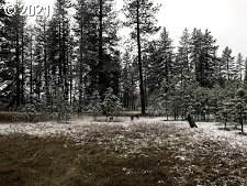 Pine Forest, Goldendale, WA 98620 (MLS #21035140) :: Premiere Property Group LLC
