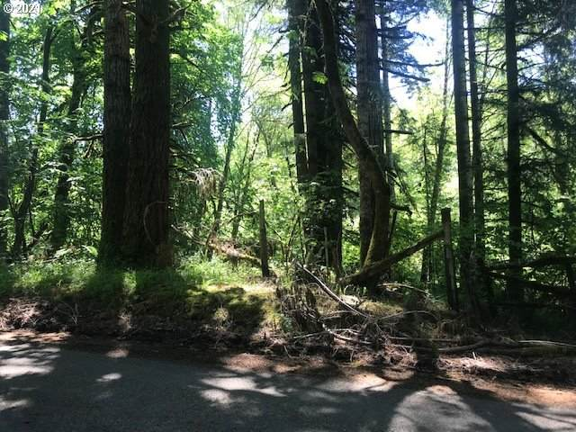 0 Hwy 180, Eddyville, OR 97343 (MLS #21079066) :: Cano Real Estate