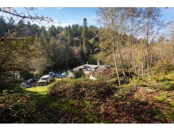 12831 NW Rock Creek Rd, Portland, OR 97231 (MLS #21083219) :: McKillion Real Estate Group