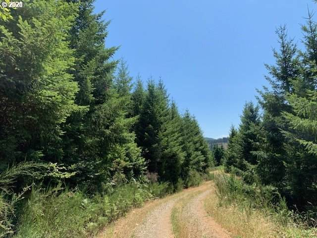 0 North Bear Creek Rd, Curtin, OR 97429 (MLS #21084531) :: Real Tour Property Group