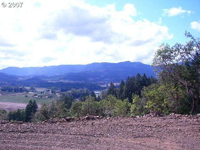 9581 Garden Valley Rd - Photo 1
