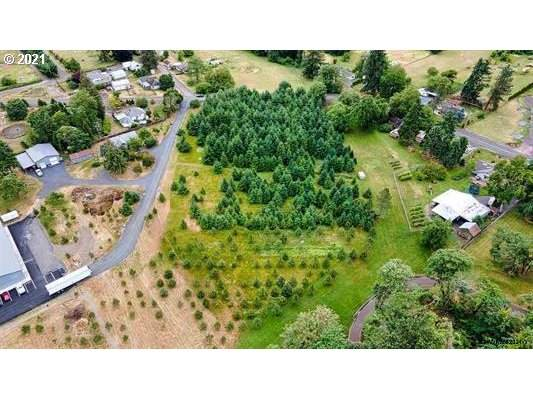 33026 Tennessee Rd, Lebanon, OR 97355 (MLS #21273437) :: Fox Real Estate Group