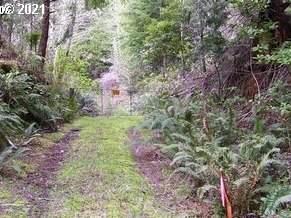 Cedar Valley Rd, Gold Beach, OR 97444 (MLS #21283614) :: Holdhusen Real Estate Group