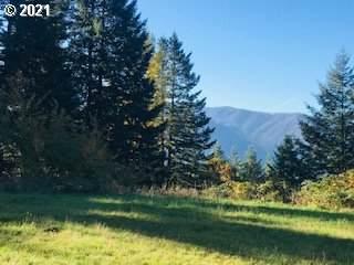 131 Beacon Highlands Rd - Photo 1