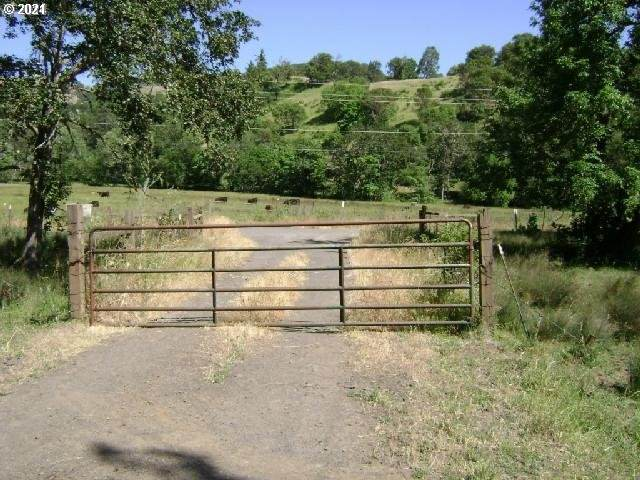 0 Newton Creek Rd - Photo 1