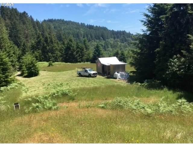 Carpenterville Rd, Brookings, OR 97415 (MLS #21384283) :: Oregon Farm & Home Brokers
