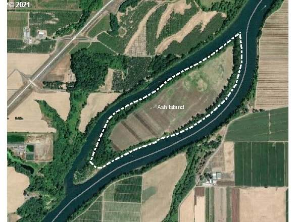 0 Ash Island, Newberg, OR 97132 (MLS #21464380) :: Townsend Jarvis Group Real Estate
