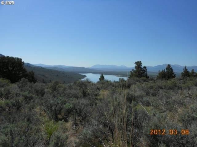 Rattlesnake Estates, Unity, OR 97884 (MLS #21468907) :: Tim Shannon Realty, Inc.