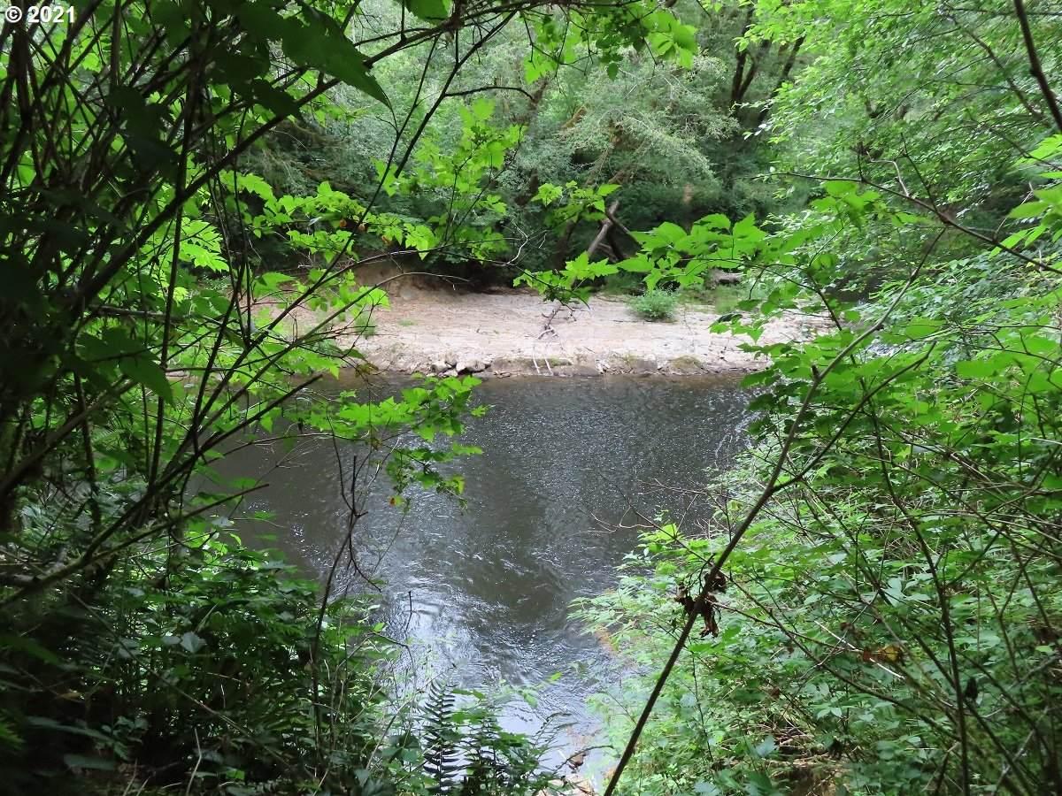 Weyerhaeuser Logging Rd - Photo 1