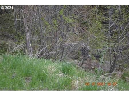 60751 Ferguson Ln, Wallowa Lake, OR 97846 (MLS #21575341) :: Gustavo Group