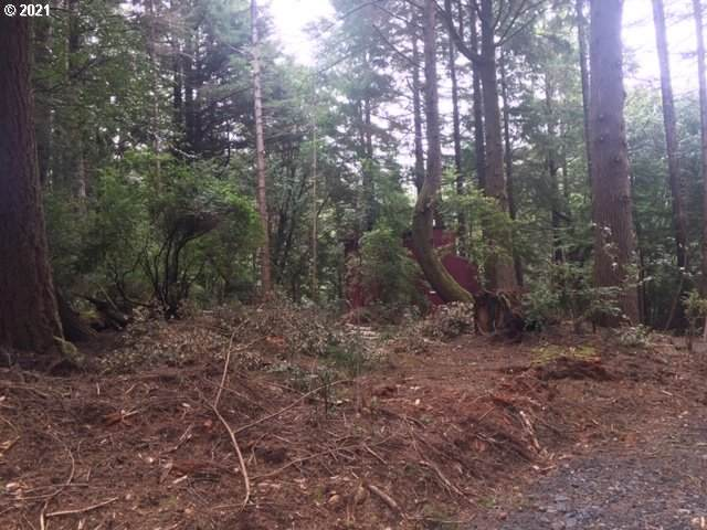 Park Rd, Port Orford, OR 97465 (MLS #21678090) :: RE/MAX Integrity