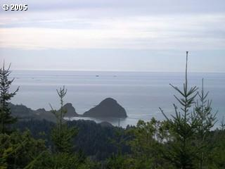 0 Pacific Highlands Dr, Port Orford, OR 97465 (MLS #5081096) :: Song Real Estate