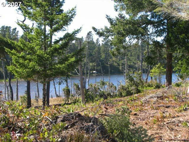 Lake Point Dr Lot25, Florence, OR 97439 (MLS #6054648) :: Portland Lifestyle Team