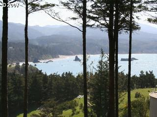 Spyglass Ln, Port Orford, OR 97465 (MLS #7004968) :: Cano Real Estate