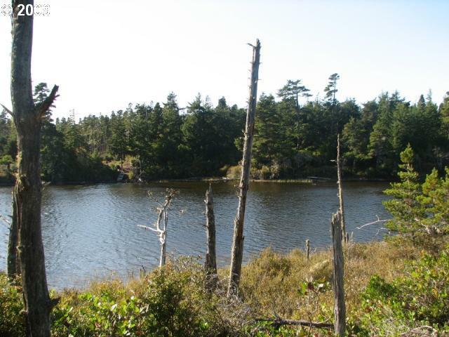 Lake Point Dr Lot59, Florence, OR 97439 (MLS #9023132) :: Cano Real Estate