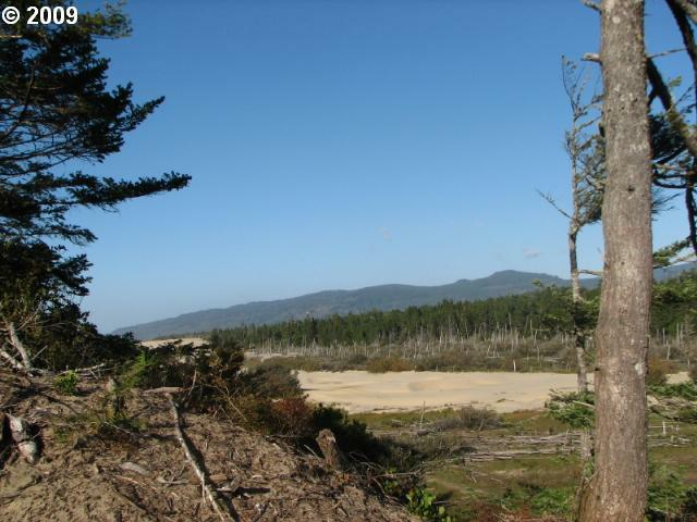 Lake Point Dr Lot67, Florence, OR 97439 (MLS #9023318) :: Hatch Homes Group