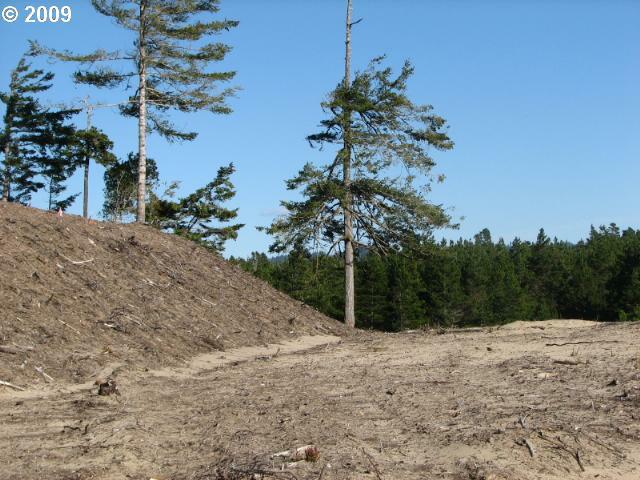 Lake Point Dr Lot68, Florence, OR 97439 (MLS #9023632) :: Portland Lifestyle Team