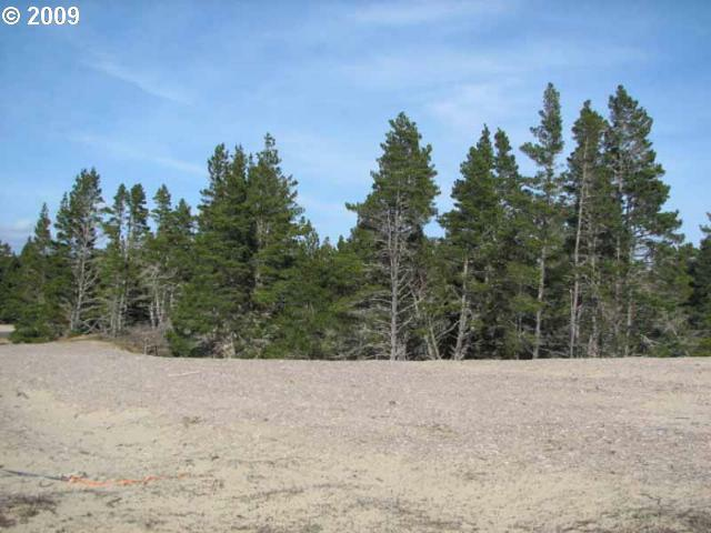 Starview Dr Lot91, Florence, OR 97439 (MLS #9027868) :: Portland Lifestyle Team