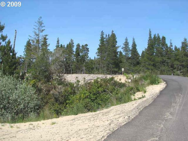 Lake Point Dr Lot74, Florence, OR 97439 (MLS #9028630) :: Hatch Homes Group