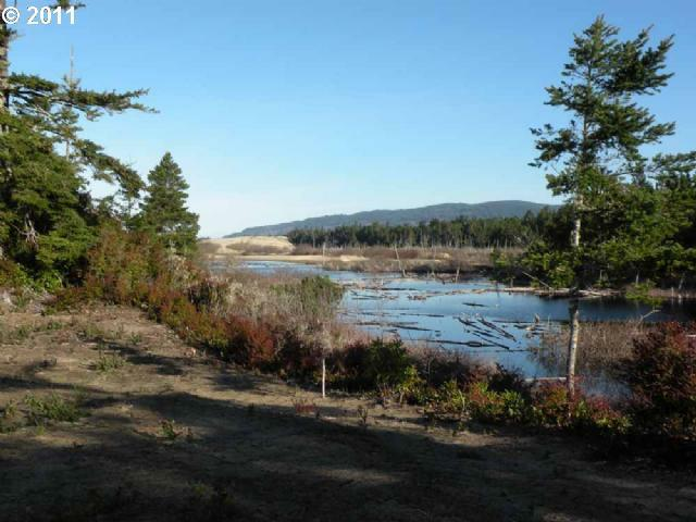 Lake Point Dr Lot75, Florence, OR 97439 (MLS #9028640) :: Hatch Homes Group