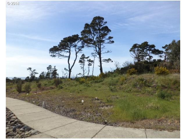 Twin Tree Ct Lot19, Florence, OR 97439 (MLS #14653282) :: Hatch Homes Group