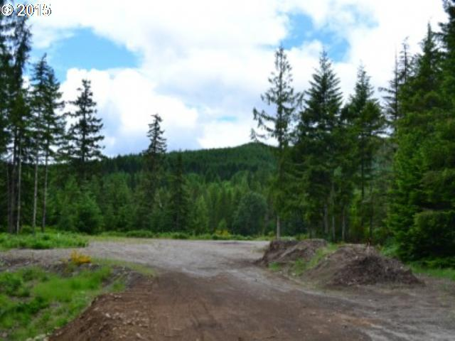 Lodgepole Ln, Cougar, WA 98616 (MLS #15138591) :: Cano Real Estate