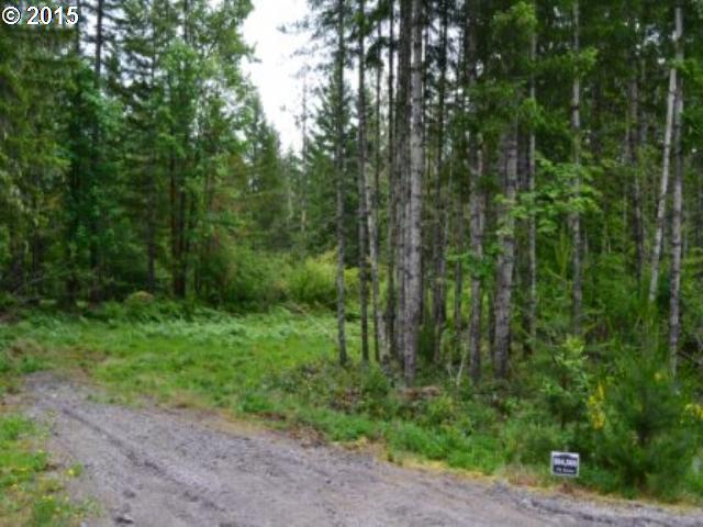 Lodgepole Ln, Cougar, WA 98616 (MLS #15408553) :: Cano Real Estate