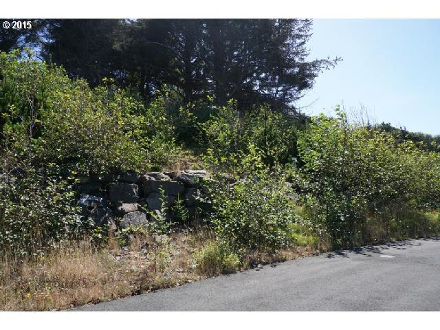 Mulberry Loop, Lincoln City, OR 97367 (MLS #15587026) :: Cano Real Estate