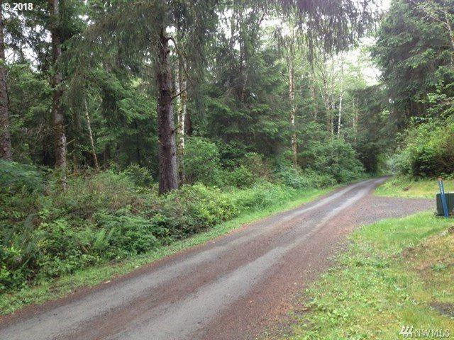 23610 Birch Ln, Ocean Park, WA 98640 (MLS #18152822) :: Harpole Homes Oregon