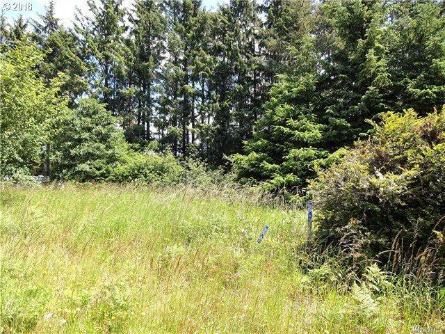 24706 Ash Pl, Ocean Park, WA 98640 (MLS #18279689) :: Harpole Homes Oregon