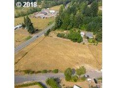 2743 Lewis River Rd, Woodland, WA 98674 (MLS #18416256) :: Hatch Homes Group