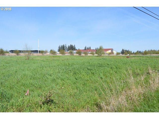 17108 NE 10TH Ave, Ridgefield, WA 98642 (MLS #18451376) :: Cano Real Estate