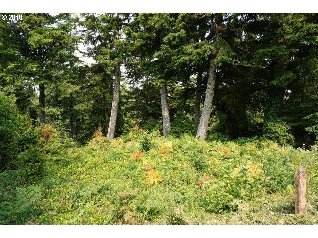 526 Eagles Nest, Gleneden Beach, OR 97388 (MLS #18698205) :: Cano Real Estate