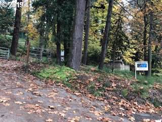 Collins Ln, Springfield, OR 97478 (MLS #19139495) :: Song Real Estate