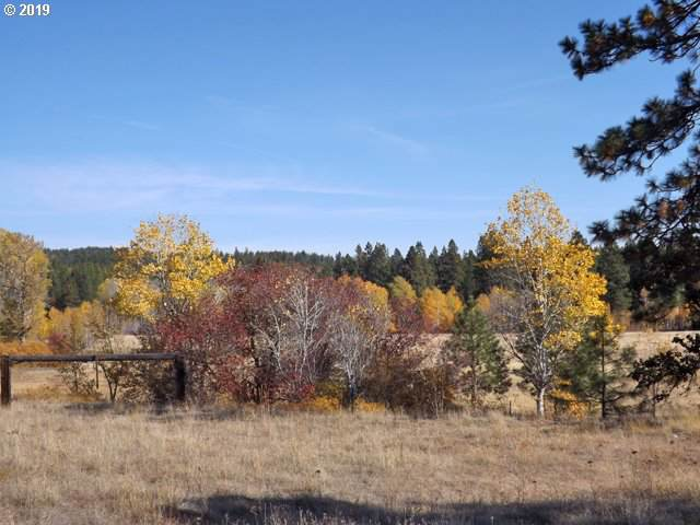 W Homestead Dr Lot 1, Goldendale, WA 98620 (MLS #19404599) :: Townsend Jarvis Group Real Estate