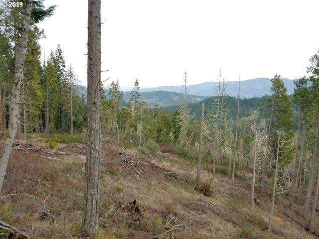 Turkey Run Rd, Creswell, OR 97426 (MLS #19565953) :: The Galand Haas Real Estate Team