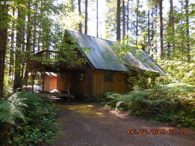 Cabin 40 Northwoods, Cougar, WA 98616 (MLS #19572159) :: R&R Properties of Eugene LLC