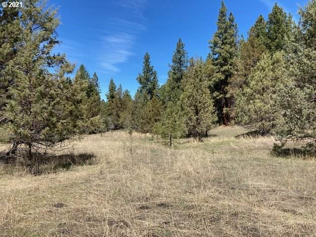 Nans Rock Rd, Mount Vernon, OR 97865 (MLS #21028873) :: The Pacific Group
