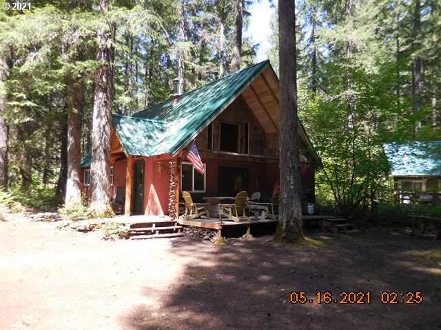 Cabin 36 Northwoods, Cougar, WA 98616 (MLS #21613806) :: Gustavo Group