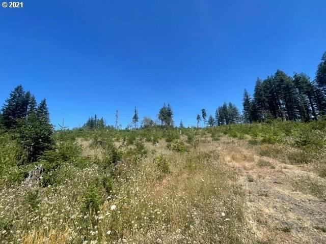 Skamania Mines Rd, Washougal, WA 98671 (MLS #21619305) :: Reuben Bray Homes
