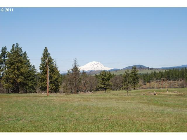 Sara View Dr #3, Goldendale, WA 98620 (MLS #11676466) :: Beach Loop Realty