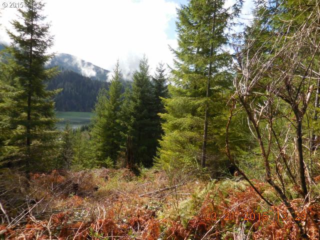 3 Marble Creek - Photo 1